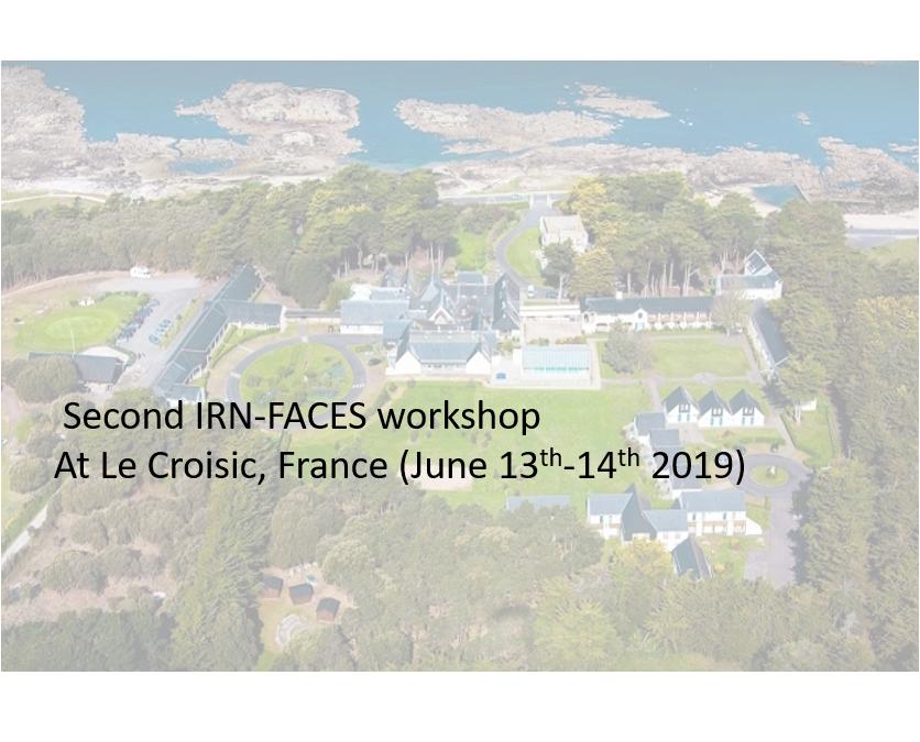 Second IRN-FACES workshop at Le Croisic, France